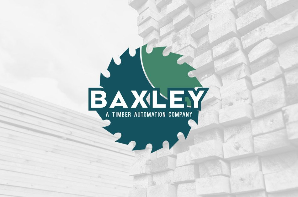 Baxscan 1000 Edger Verification System