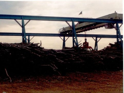 Log Pro Lineal Log Crane 1