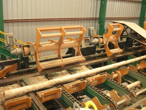 LogPro Scan Conveyor 29