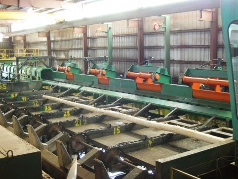 LogPro Scan Conveyor 5